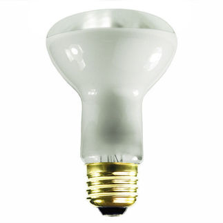 12 Volt Flood Light Bulb