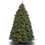 9 ft. x 60 in. Artificial Christmas Tree - Pre-Lit Alaskan Fir - Classic PVC Needles - Barcana