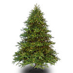 9 ft. Artificial Christmas Tree - Pre-Lit Wide Alaskan Deluxe Fir - Realistic PE/PVC Needles - Barcana