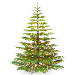 5 ft. Artificial Christmas Tree - Pre-Lit Noble Fir - Classic PVC Needles - Barcana