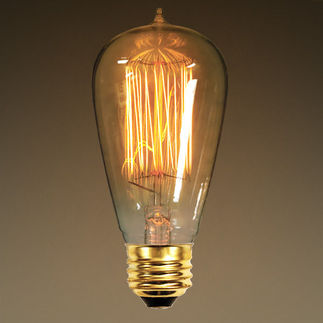 40 Watt - Vintage Antique Light Bulb - Edison Style - Hand-Wound Cage