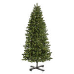 7.5 ft. Artificial Christmas Tree - Classic PVC Needles - Pre-Lit Slim Grand Teton Pine - Pre-Lit with 650 Clear Mini Lights - Vickerman