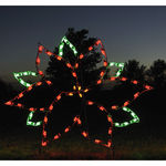 4 ft. x 5.25 ft. - C7 LED - Large Poinsettia - 120 Volt