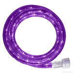50 ft. Purple Rope Light Kit