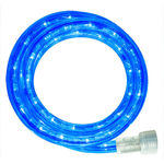 LED - 30 ft. - Rope Light - Blue - 120 Volt