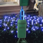 (150) Bulbs - Blue Net Lights - 4 ft. x 6 ft. - Green Wire - 120V