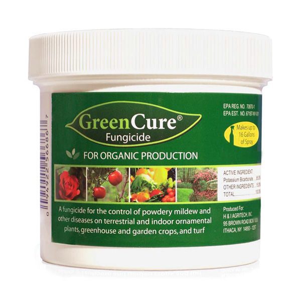 green cure fungicide instructions